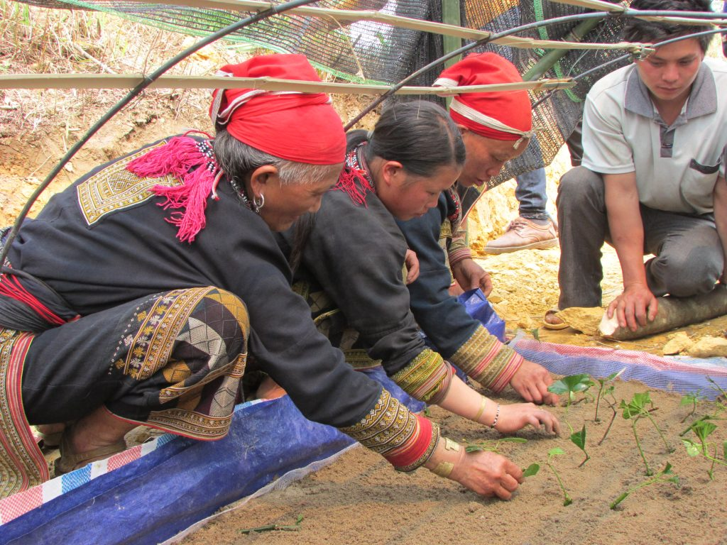 Preserving Tradition For Sustainable Development