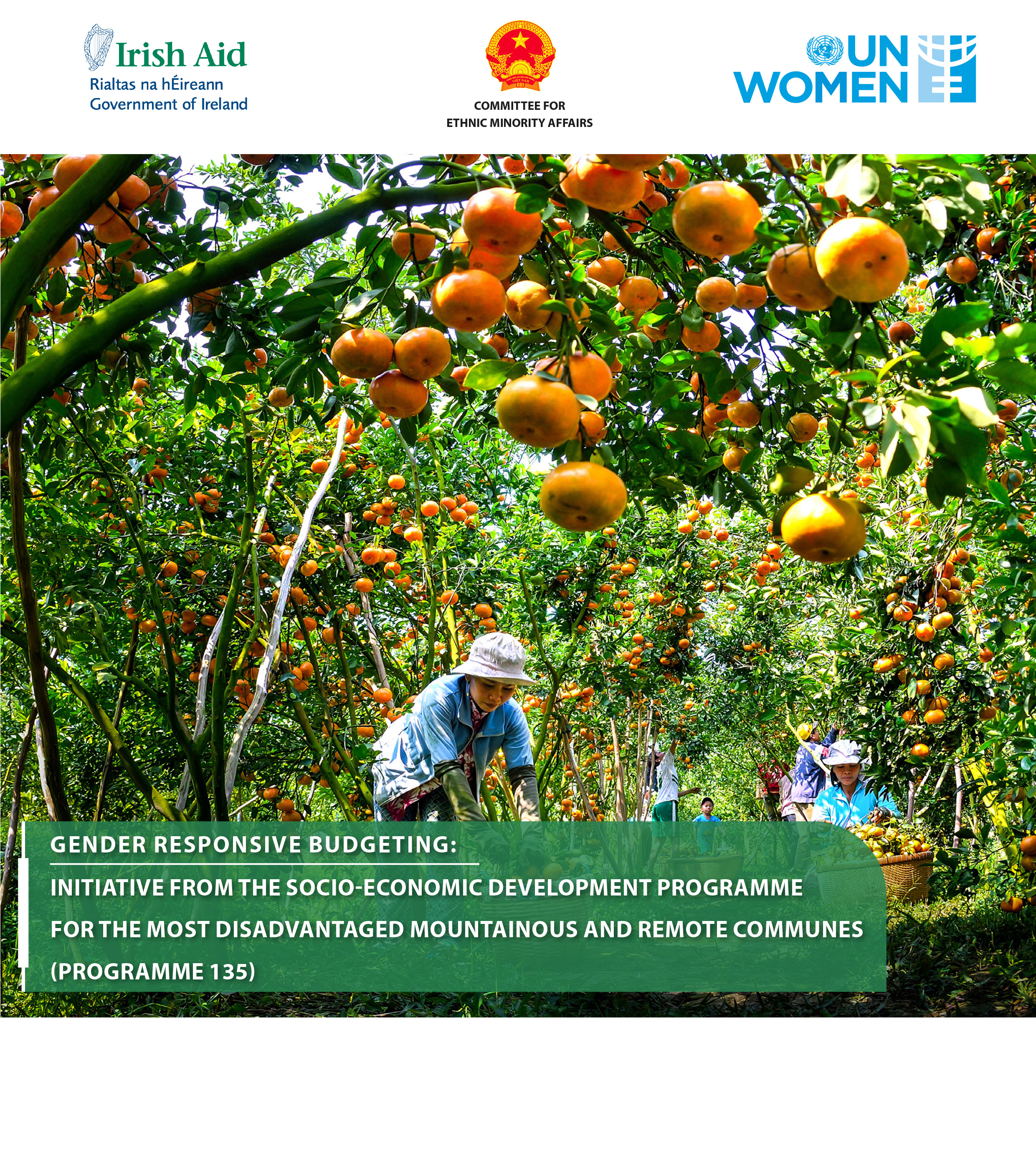 GENDER RESPONSIVE BUDGETING: INITIATIVE FROM THE SOCIO-ECONOMIC DEVELOPMENT PROGRAMME FOR THE EXTREMELY DIFFICULT MOUNTAINOUS AND REMOTE COMMUNES (PROGRAMME 135)