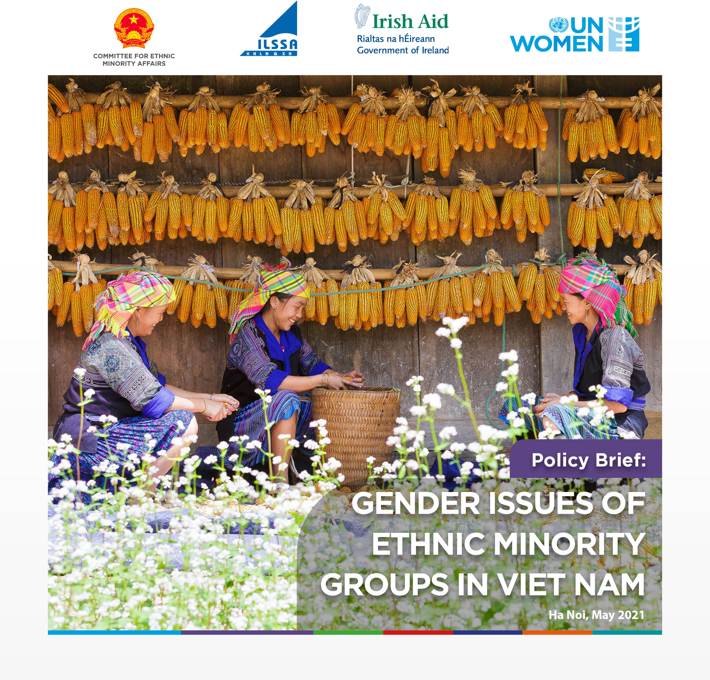 POLICY BRIEF: GENDER ISSUES OF ETHNIC MINORITY GROUPS IN VIET NAM