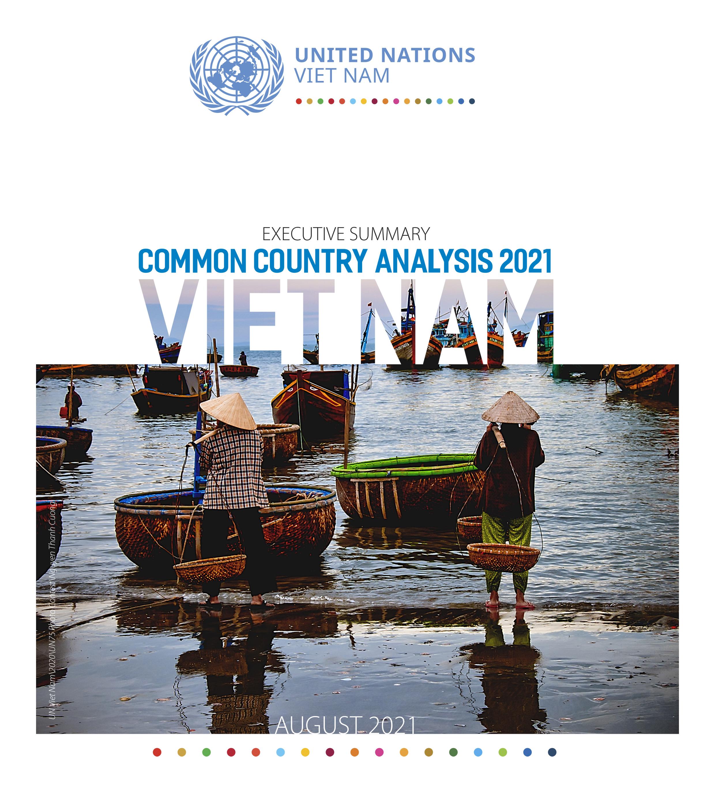 EXECUTIVE SUMMARY: COMMON COUNTRY ANALYSIS 2021 - VIET NAM